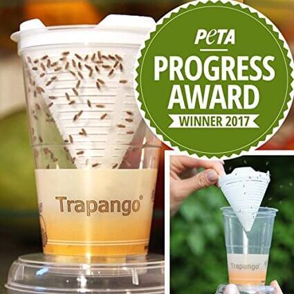 Fruchtfliegen-Lebendfalle Trapango