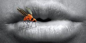Was zieht Stechmücken an